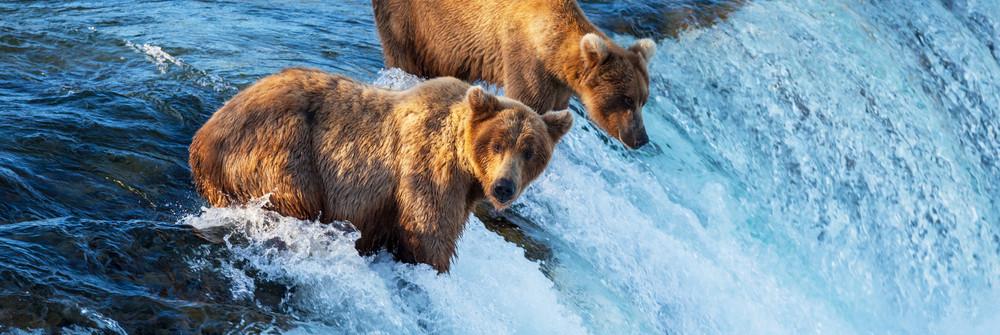 shutterstock_113840647_Alaska