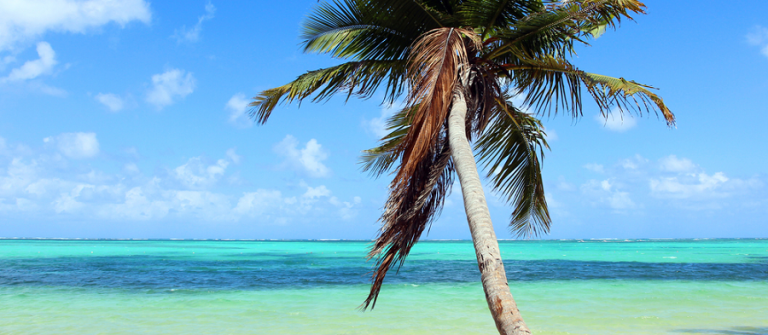punta cana_beach