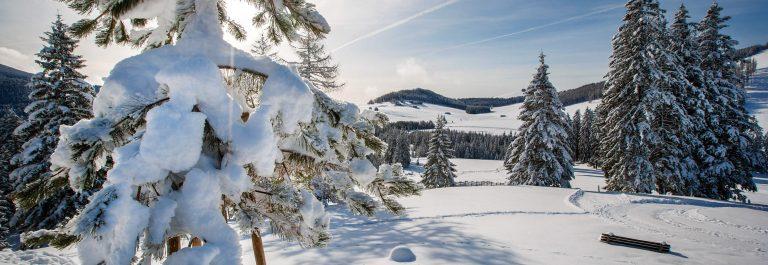 7-Winter