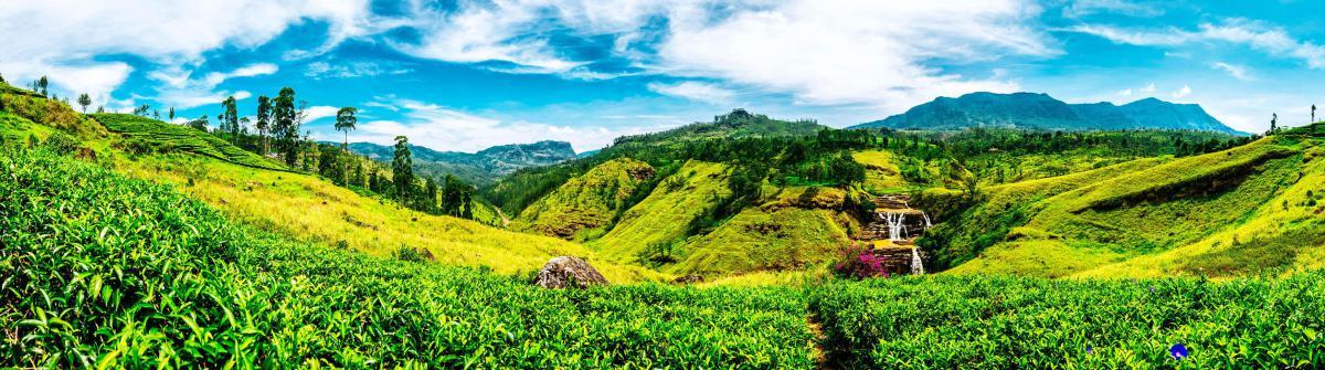 Ferien auf Sri Lanka 2017