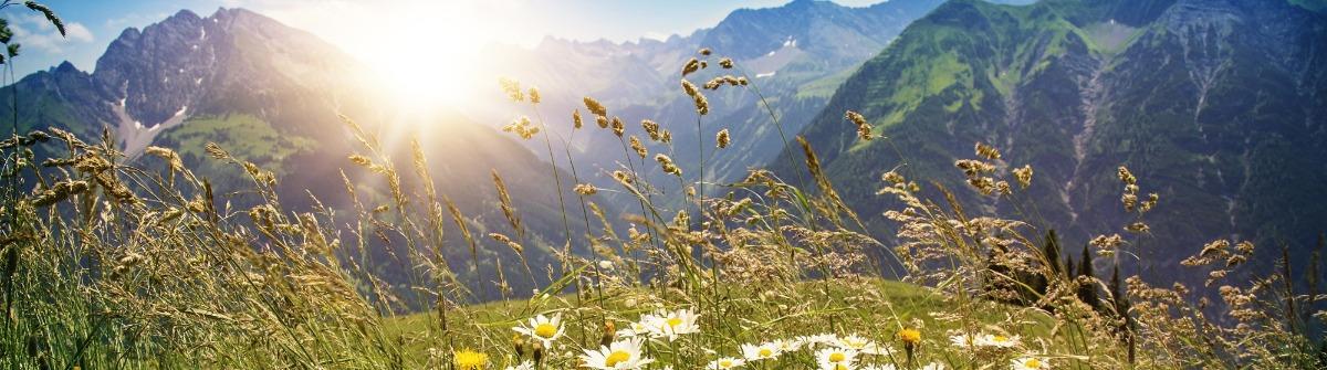 v3_header_Vorarlberg