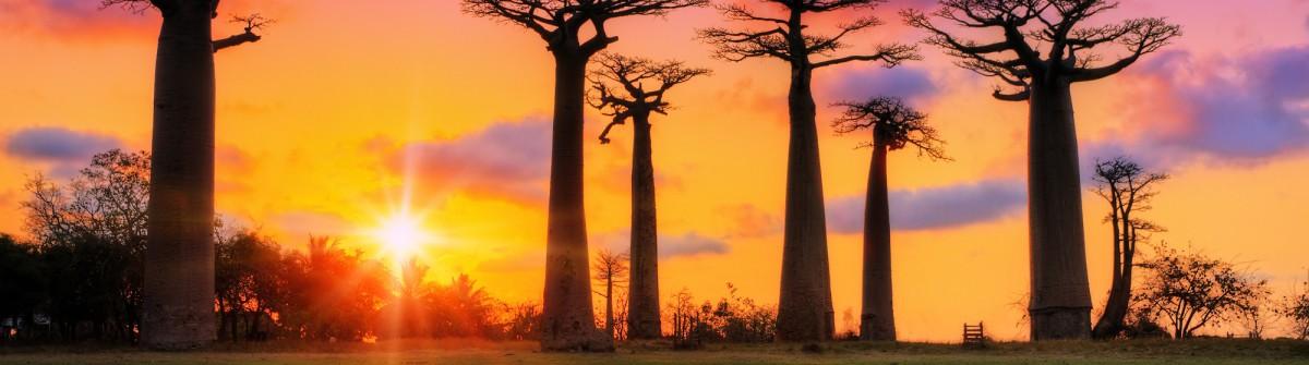 Madagaskar Flüge