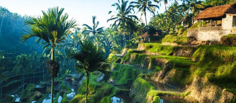Hanging Gardens of Bali hotel