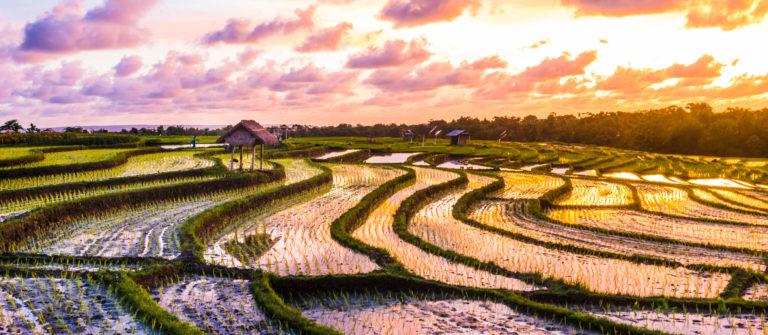 Bali Ferien