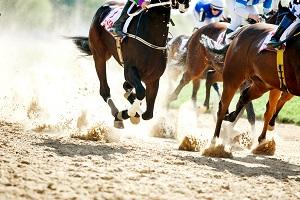 Reiseziele Juli_Events_Festivals_Palio di Siena Pferderennen
