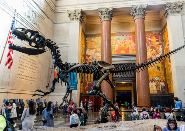 museum-of-natural-history_new-york-editorial-only-legacy1995-shutterstock_376567660