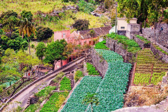 farm-in-cape-verde-island-of-sao-antao-shutterstock_100422961-2
