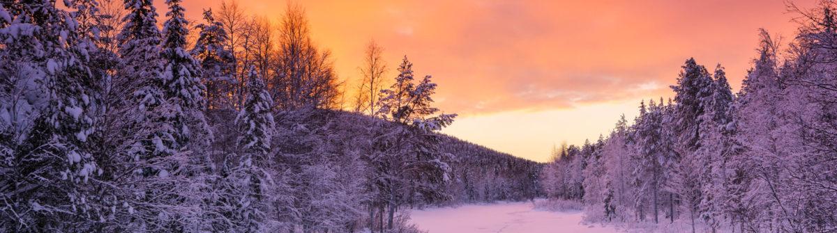 Traumreise Finnland Angebot
