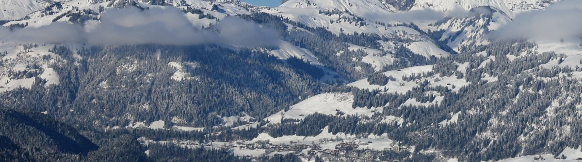 V3_header-Saanen-winter-shutterstock_471954209