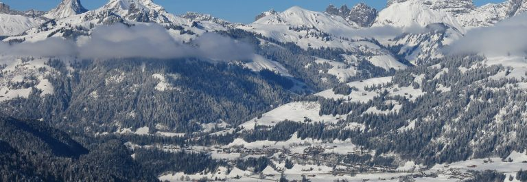 V3_header-Saanen-winter-shutterstock_471954209