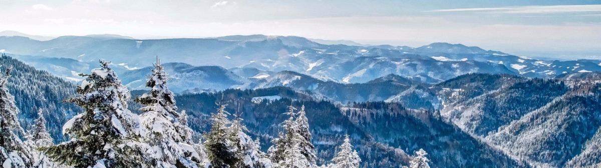 Winter im Schwarzwald, Deutschland iStock_55150236_LARGE-2_preview
