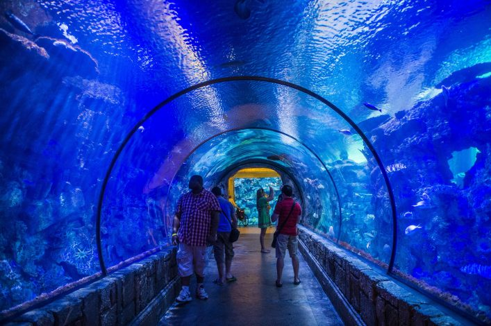 he-Shark-Reef-Aquarium-at-Mandalay-Bay-hotel-shutterstock_192719045-EDITORIAL-ONLY-Kobby-Dagan-2