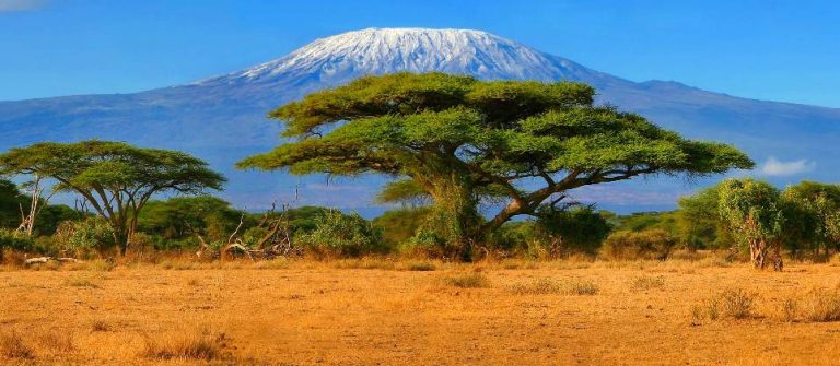 Kilimandscharo Tansania_shutterstock_706417705