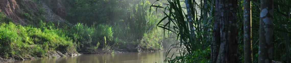 A-sunrise-along-the-Tambopata-River-in-the-Peruvian-Amazon_shutterstock_97308065