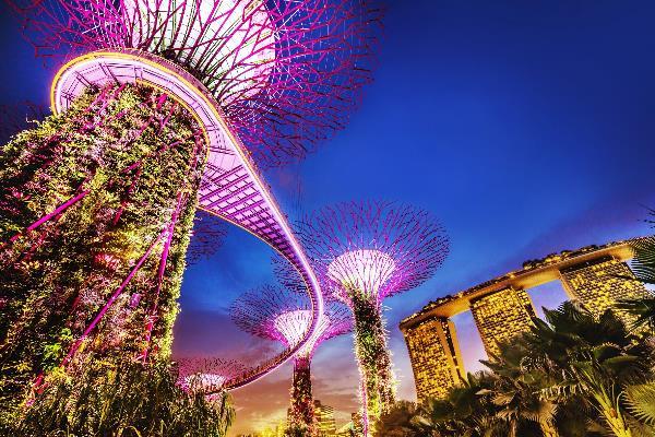 Singapur-Trees