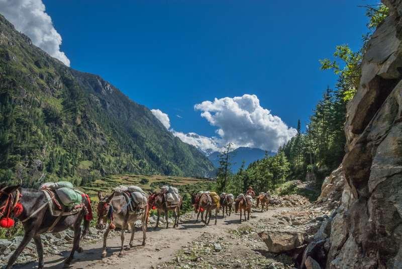Trekking Trail in Nepal