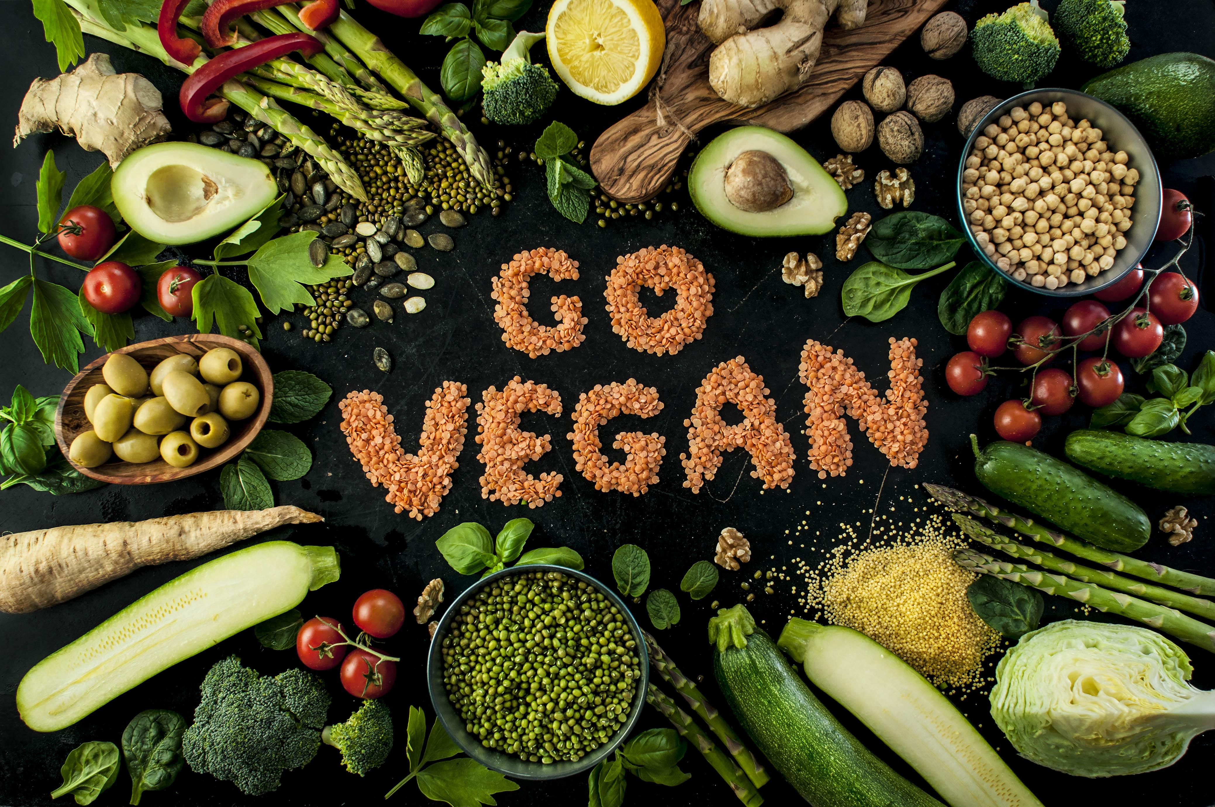 Slikovni rezultat za vegan