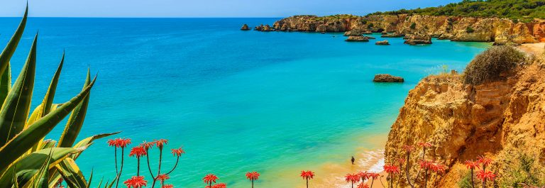 Tropical flowers on beautiful Praia da Rocha beach, Algarve region, Portugal shutterstock_282116426-2