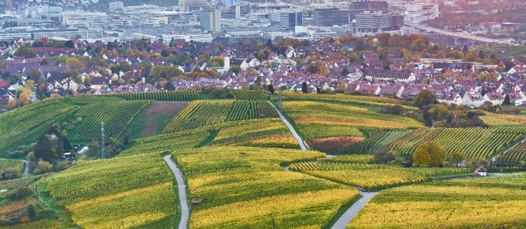 Neckar-Velley-in-Stuttgart_colorful-wine-growing-region-in-the-south-of-Germany_765709876_Header