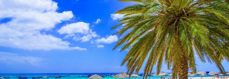 Beach-in-Tenerife-Canary-Islands-Spain_549304237