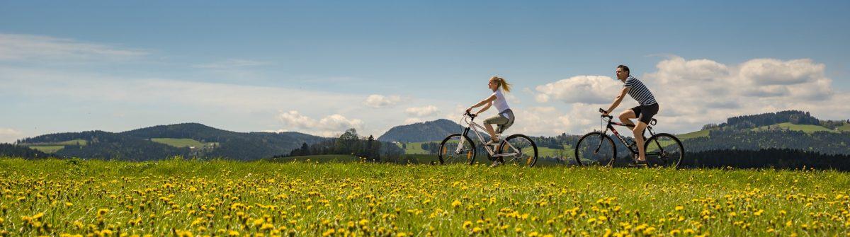 Radfahren-c-Oststeiermark-Tourismus-Bernhard-Bergmann-11