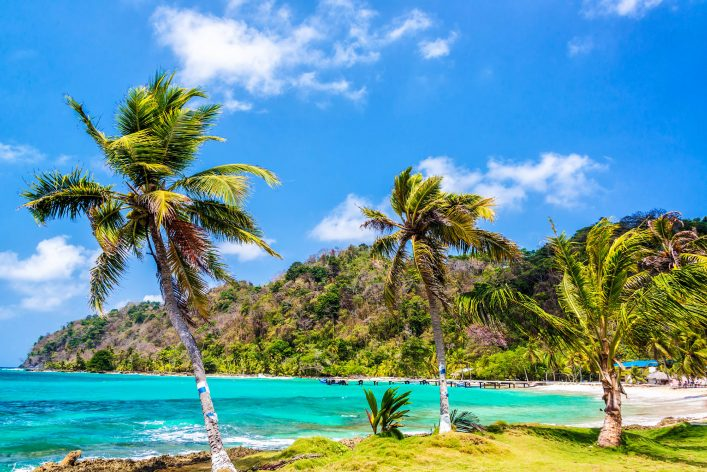 three-palm-trees-in-panama-istock_000037502014_large-2